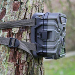 Wildkamera Wild Vision angebracht