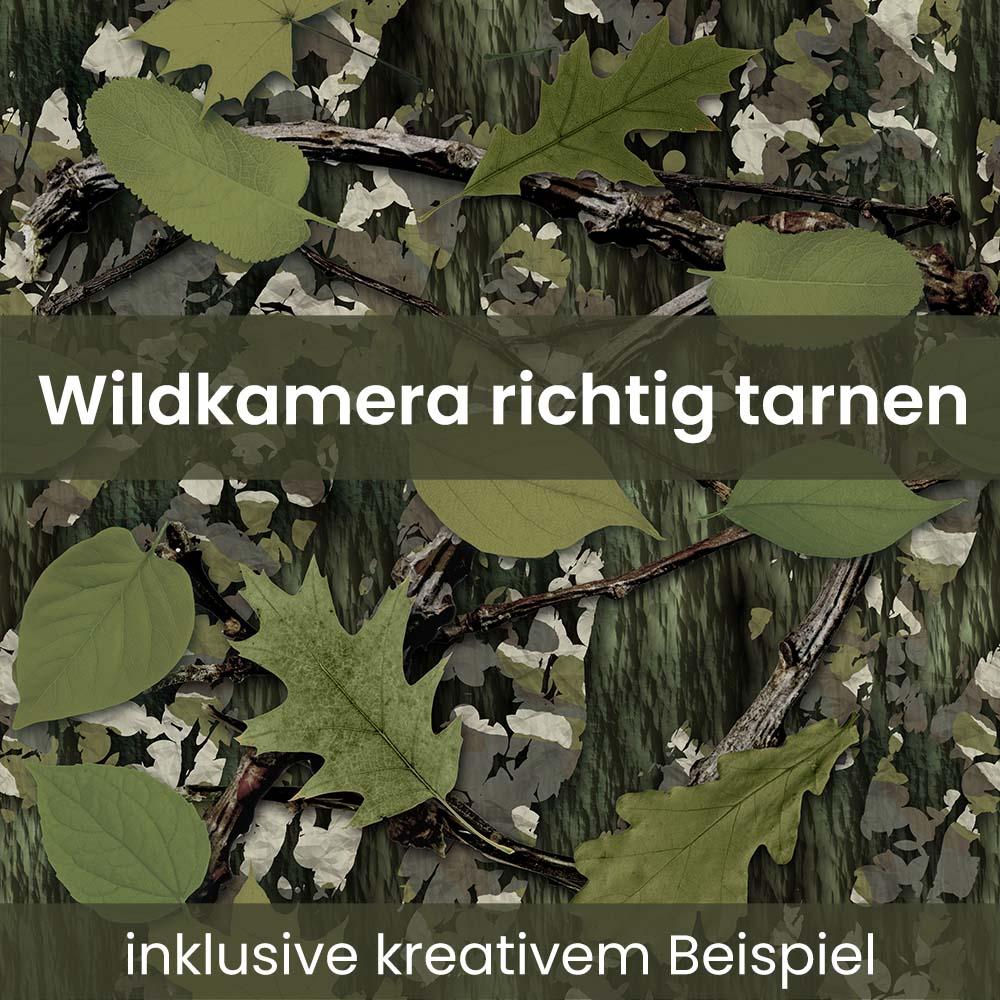 Wildkamera tarnen